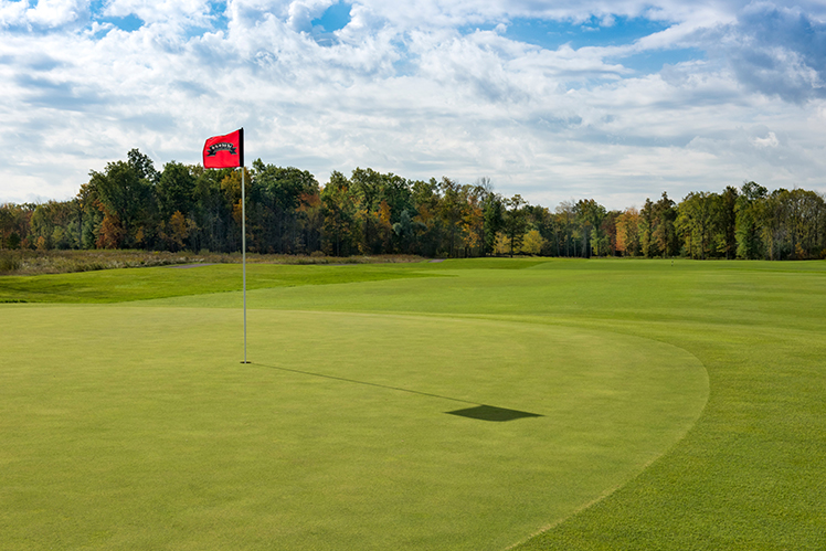 Special Chippawa 9-hole Rates