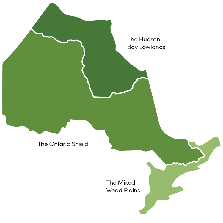 Map showing three main ecozones of Ontario