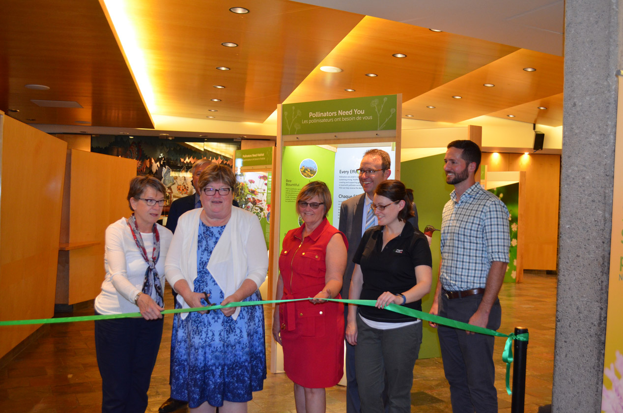 Niagara Parks Unveils New Pollinator Exhibit at the Butterfly Conservatory
