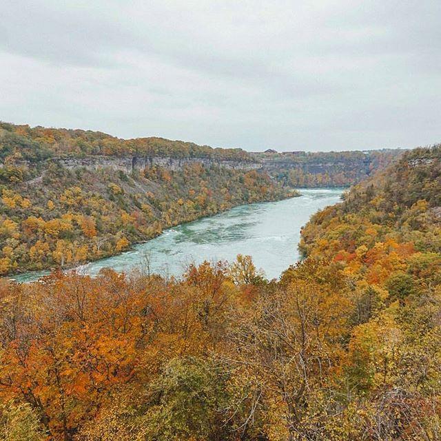 The Niagara Gorge awash with vibrant fall colours. Photo: @myonebigplanet #Niaga