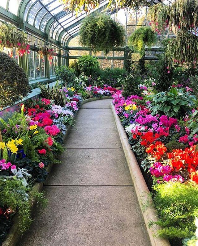 Take a walk through a spring garden at our Floral Showhouse 🌷🌷 T