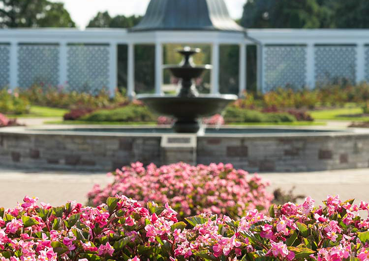 Garden Walking Tour with Niagara Parks