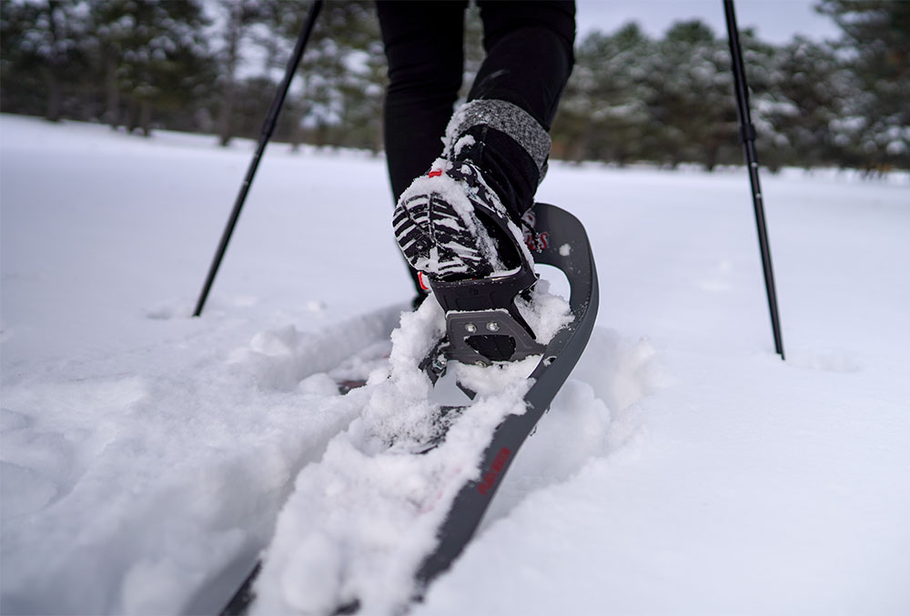 Snowshoe through snow dusted trees </br>Weekends, Dec.28 - Mar 29