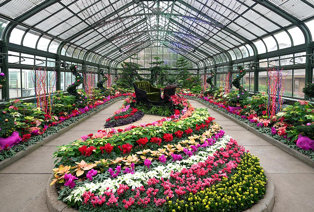 Indoor Paradise at the Floral Showhouse