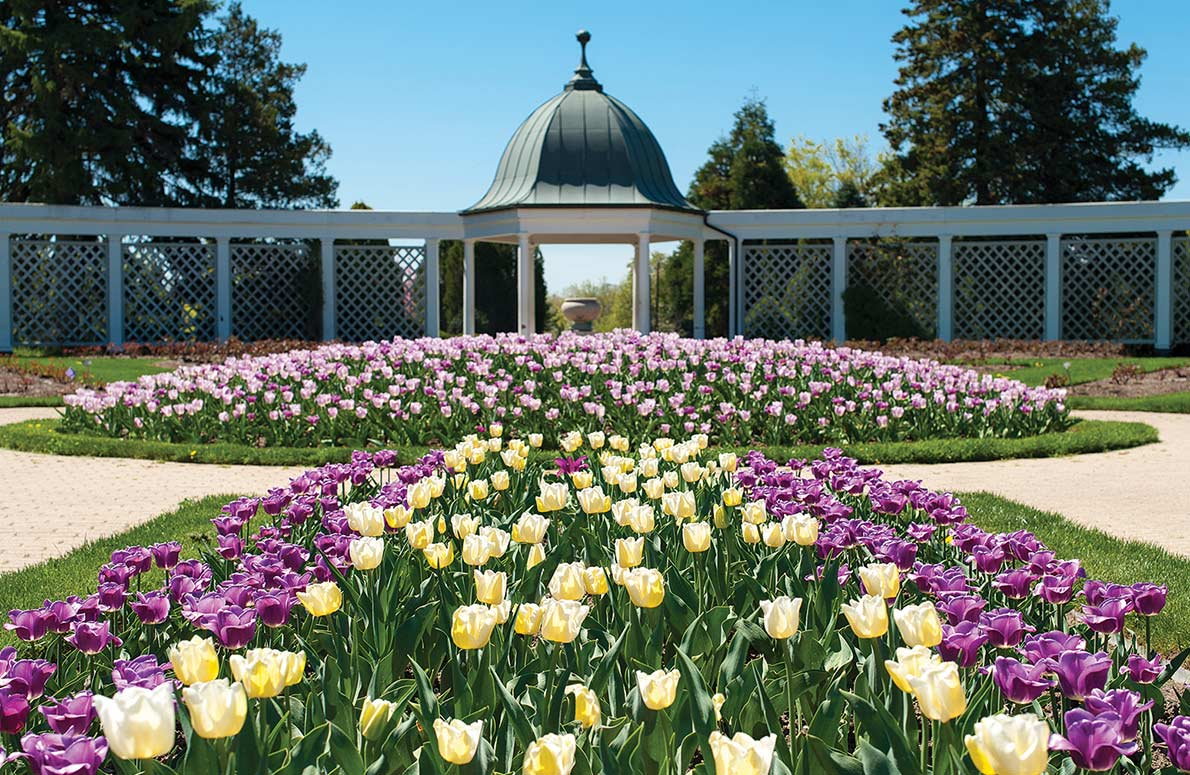 Botanical Gardens + Butterfly Conservatory