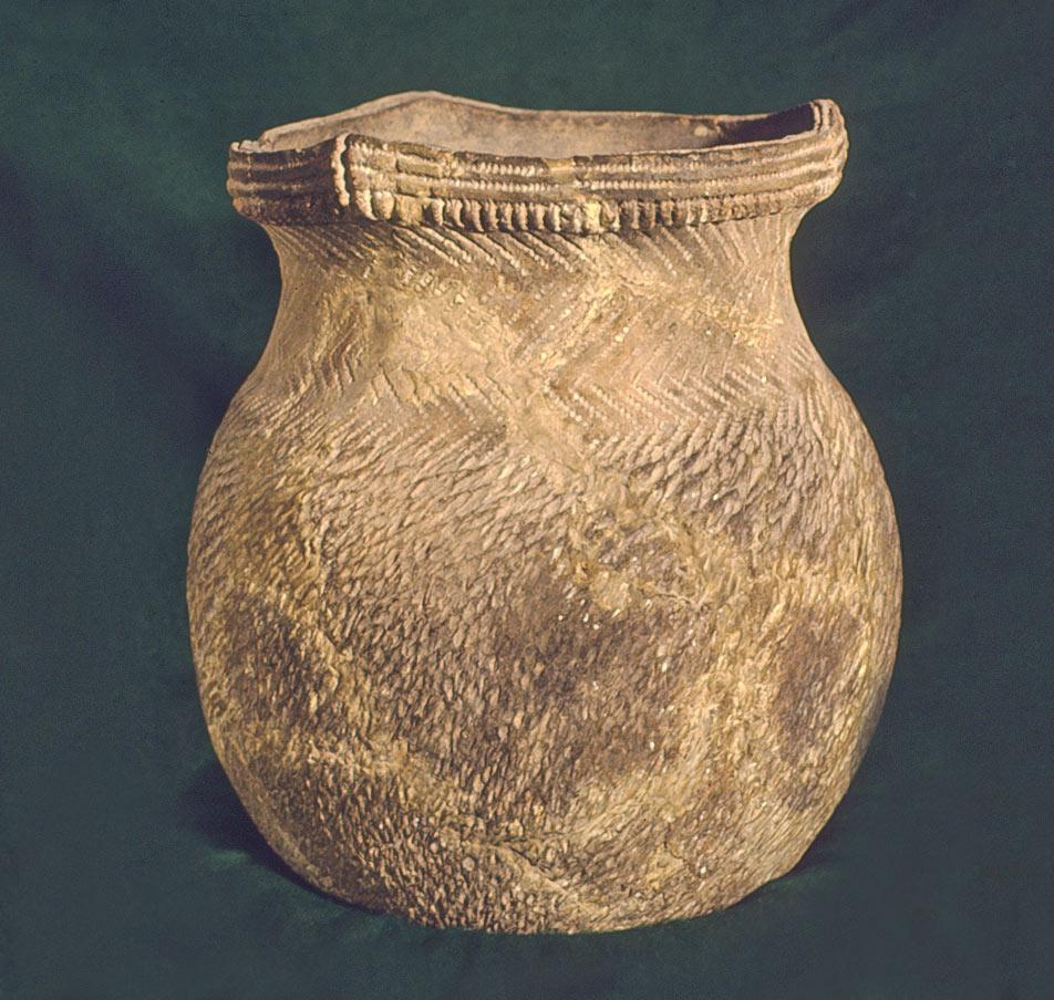 Jamie Jacobs <span>Seneca Decolonization through Archaeology</span>